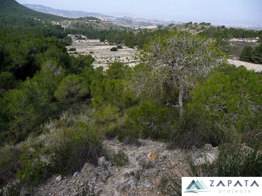 Sierra Escalona-zepa-lugares de interes-promociones zapata (2)