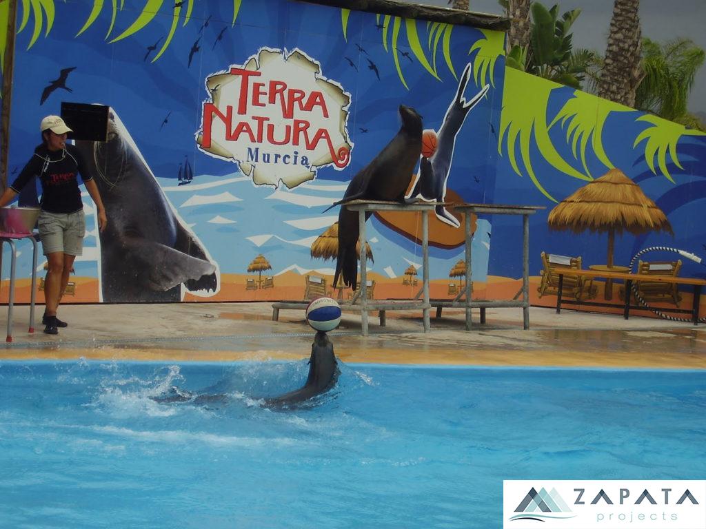 Terra Natura Murcia-Parques Acuaticos-Zoologico-Promociones Zapata (2)