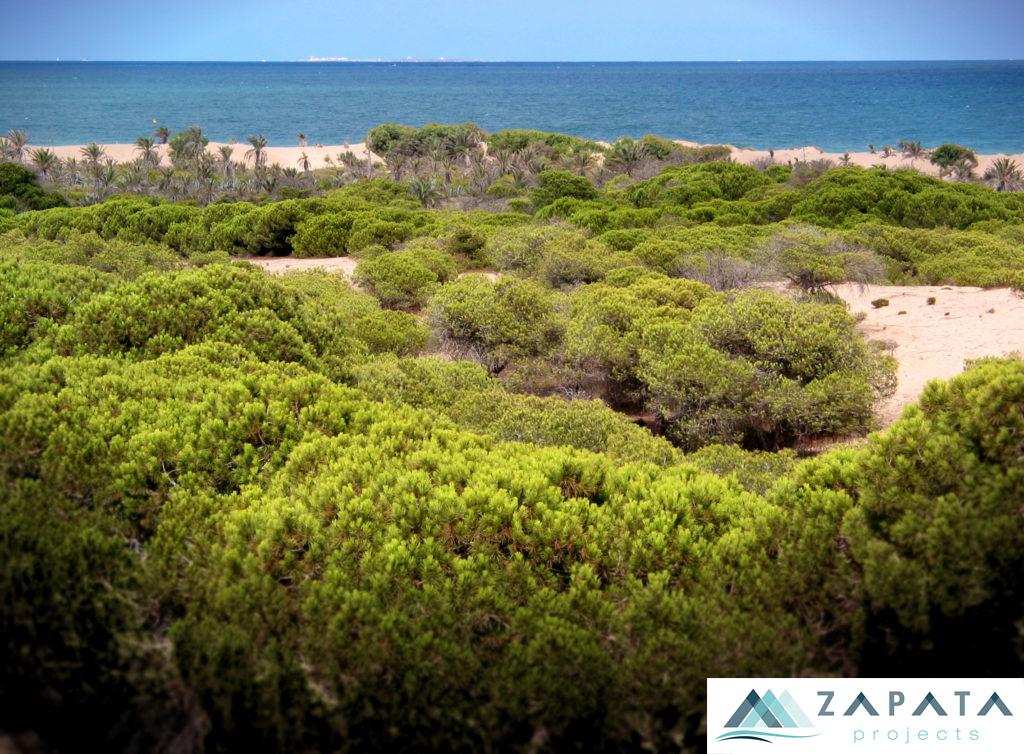 dunas y pinada de guardamar-lugares de interes-inmuebles y promociones zapata