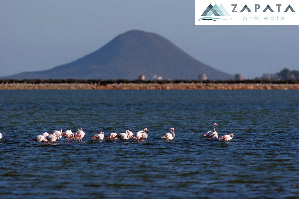 paisaje protegido islas mar menor-lugares de interes-promociones zapata (1)